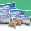OLED, LCD, TFT And Customized Display Solutions For Industry